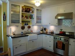 Best Paint For Kitchen Cabinets Changing Kitchen Cabinet Doors Nice Home Design