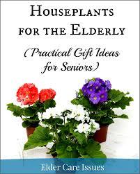 gift ideas for elderly houseplants for the elderly practical gift ideas for seniors