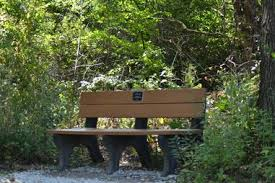 dedicate a tree or bench