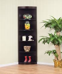 Corner Display Cabinet With Storage 74 Best Pantries And Display Cabinets Images On Pinterest