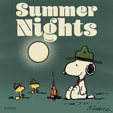 snoopy love summer nights
