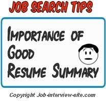 Resume Summary Statement Example by Resume Summary Examples Resume Summary Statement Examples