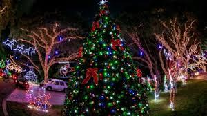 palm harbor christmas lights popular snug harbor light show back on after blackout sunday