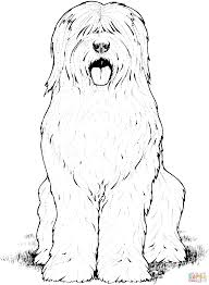 unique dog and cat coloring pages drawing big collection free