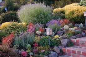 california native plant garden great garden ideas from the west u0027s best gardens plants gardens