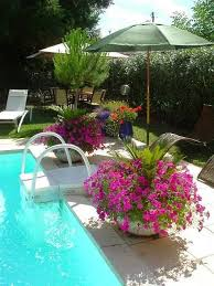 Best  Backyard Pool Landscaping Ideas Only On Pinterest Pool - Great backyard pool designs