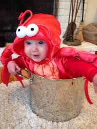 Halloween Costumes Baby 20 Baby Lobster Costume Ideas Funny Baby