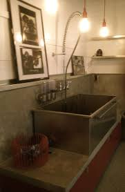 Stainless Steel Laundry Room Sinks by 48 Best Pet Products Images On Pinterest Pet Products Dog