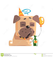 champagne bottle cartoon little pet pug dog puppy with collar having a birthday party with