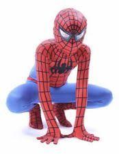 Spiderman Costume Halloween Spider Costume Ebay