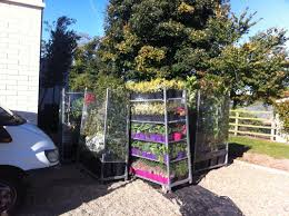 Plant Delivery Innovative Garden Design And Site Supervision Malahide
