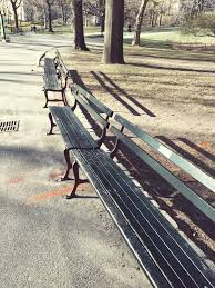 Benches In Park - city