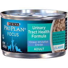 Entree by Focus Urinary Tract Health Formula Ocean Whitefish Entree