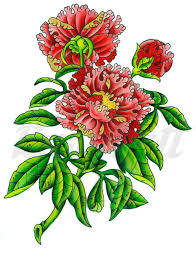 Flowers By Violet - rose by violet fivel