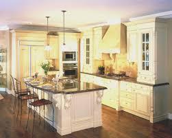 Alternative Kitchen Cabinet Ideas Kitchen Top Alternative To Kitchen Cabinets Room Ideas