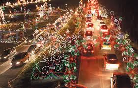 palm harbor christmas lights charming design christmas lights ta 2015 bay area 2014 fl