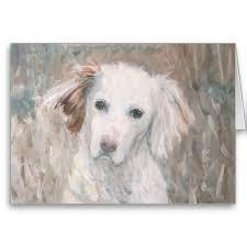 White Dog Greeting Card Pinterest