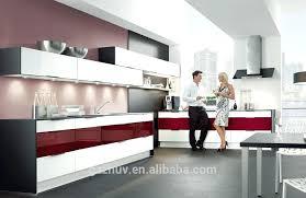 Acrylic Cabinet Doors Acrylic Kitchen Cabinets U2013 Stadt Calw
