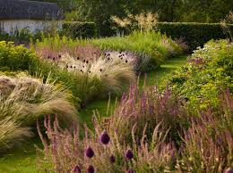 566 best plants combinations images on landscaping