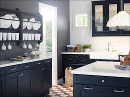 Ikea Kitchen Cabinet Accessories Replacement Kitchen Cabinet Doors Ikea Images Glass Door