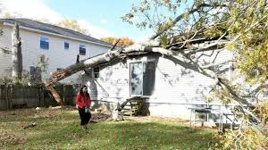 wyandanch couple loses home after tree snaps falls into house