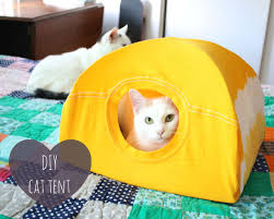 diy cat tent 9 steps with pictures