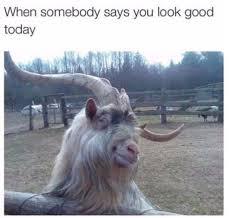 Cute Memes - when someone says you look good today funny humor cute meme
