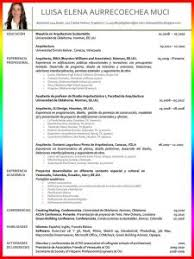 Microsoft Online Resume Templates by Resume Template Free Printable Examples Of For Online Templates