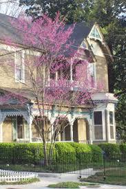 224 best victorian houses beige tan 1 images on pinterest