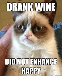 Happy Cat Meme - drank wine did not enhance happy cat meme cat planet cat planet