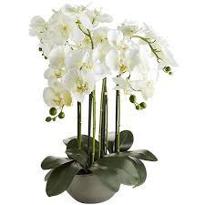 faux orchids faux oversized orchid arrangement pier 1 imports