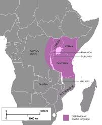 what is the origin of the swahili language and how has it evolved
