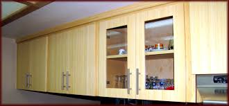 Replacement Kitchen Cabinet Doors Replacement Kitchen Cabinet Door Choice Image Glass Door