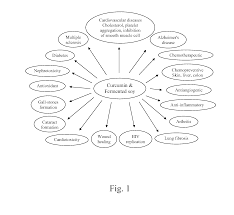 patent us20110206721 fermented soy nutritional supplements
