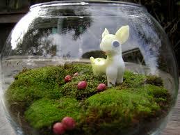 moss terrarium i hope the moss survives in it u0027s current en u2026 flickr