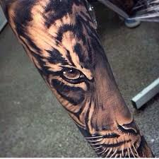 this is my finishing my half sleeve tiger