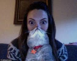 Cat Beard Meme - latest internet meme bearding is the cat s whiskers daily mail