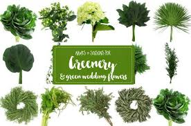 wedding flowers names guide to greenery for weddings green wedding flower names