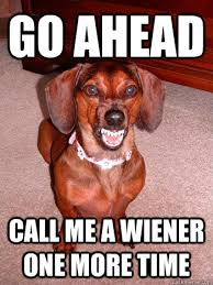 Wiener Dog Meme - go ahead call me a wiener one more time wiener dog doxie daschund