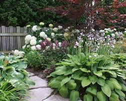 322 best gardening landscape ideas images on pinterest
