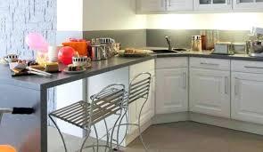 peindre placard cuisine peinture bois meuble cuisine conceptkicker co
