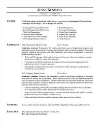 sample resume of marketing assistant