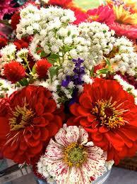 bouquets of flowers flora s bouquet csa flora s of flowers csa or flora s