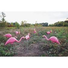 bloem flamingo lawn ornament g2 do it best