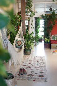 living with 670 plants in a apartment