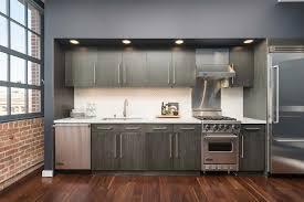 Contemporary Kitchen Design Photos Contemporary Kitchen Design Ideas Internetunblock Us