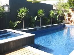 pool and garden design custom swimming pool amp spa design ideas