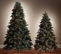 blue spruce trees lit faux blue spruce trees pottery barn