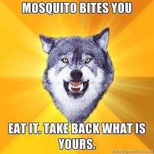 Scene Wolf Meme - scene wolf meme generator wolf best of the funny meme
