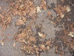 free ground textures texturez com